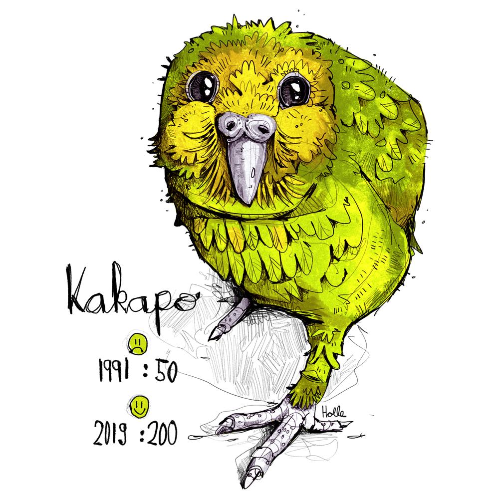 Kakapo Motiv